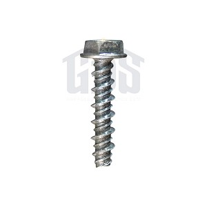 24501D04 Genie Chain Glide Gear Cover Screw